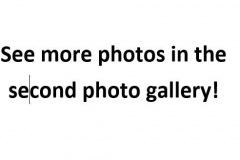 Gallery-More-Photos